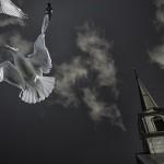 ノートルダムの鐘の原作は結末が違う?ディズニー映画では語れない悲しい最後とは?