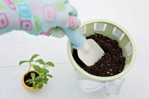 planting-783342_1280