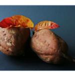 さつまいもは低カロリーでダイエットに◎レンジで蒸す時間と保存方法!