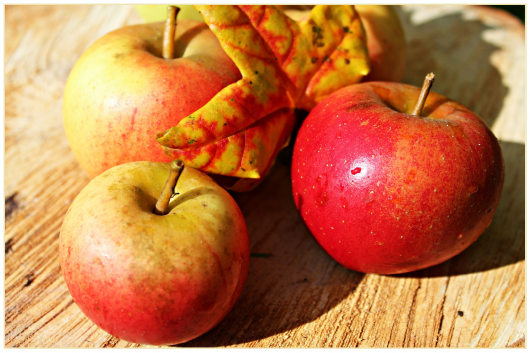 apple-496977_1920