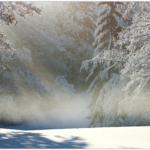 京都でよく起こる底冷えの原因と対策とは?あると便利なグッズは?