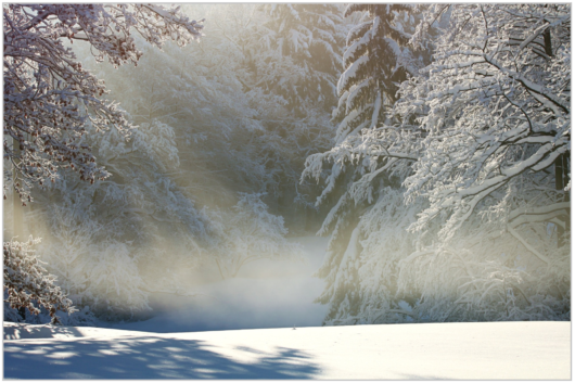 winter-1060531_1920