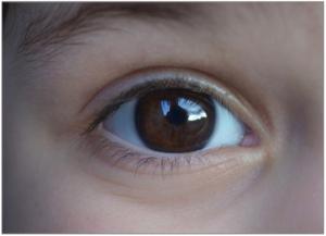 eye-1030343_1920