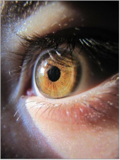 eye-298559_1920