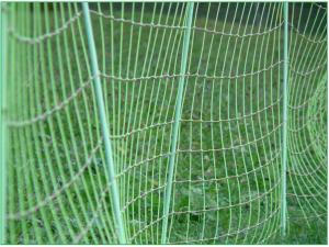 fence-62628_1920