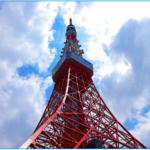東京観光のはとバスツアーのおすすめは?人気はどのコース?半日は?