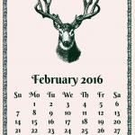 うるう年の場合誕生日はいつになる?確率はどのくらい?戸籍上はどうなる?