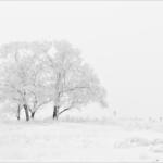 体感温度と湿度の関係。冬の寒さと快適に過ごすための環境づくりとは?