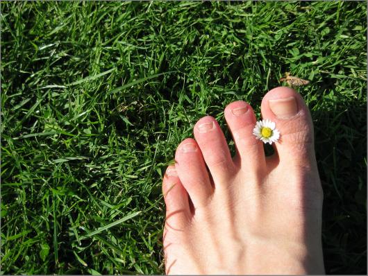 foot-5034_1920