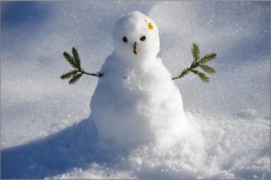 snow-man-1227476_1920