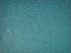 drop-of-water-566894_1920