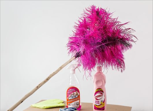 feather-duster-709124_1920