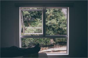 window-frame-1149117_1920