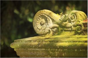 cemetery-1169708_1920