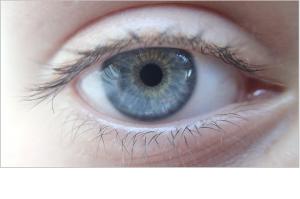 eye-369556_1920
