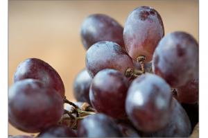 grapes-1401599_1280