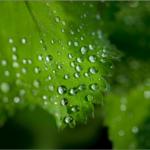 ゲリラ豪雨の意味とは?発生する原因や被害を最小限にする対策は?