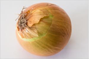 cream-onion-885923_1920