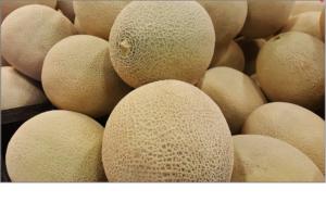 melon-1388338_1920