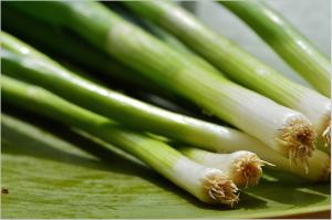spring-onions-1303271_1920 (1)