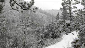 winter-1645682_1920