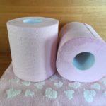 トイレットペーパーは海外で流せないのはなぜ?詰まった時の対処法3選