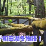 十和田湖冬物語2019!花火はいつ?おすすめ宿泊ホテル・ツアーをご紹介